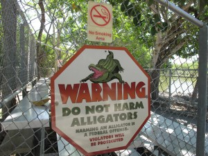 do not harm alligators
